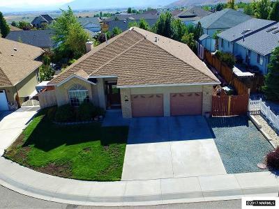Carson City Single Family Home For Sale: 1003 Vista Ridge Ct.