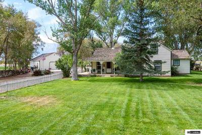Gardnerville Single Family Home For Sale: 1619 Scoti Ln