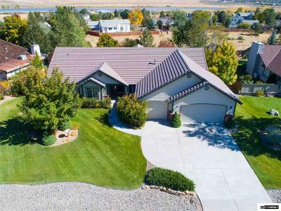 Washoe Valley Single Family Home For Sale: 405 Old Washoe Circle