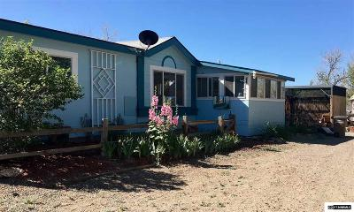Yerington Single Family Home For Sale: 14 Tucker Lane