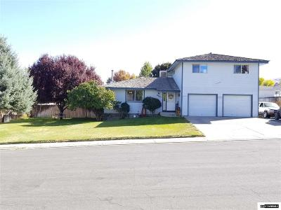 Winnemucca Single Family Home For Sale: 4151 Foothill Dr