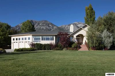 Gardnerville Single Family Home For Sale: 924 Foothill Road