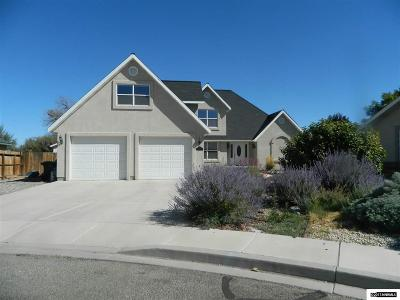 Yerington Single Family Home For Sale: 407 Ironwood Ct
