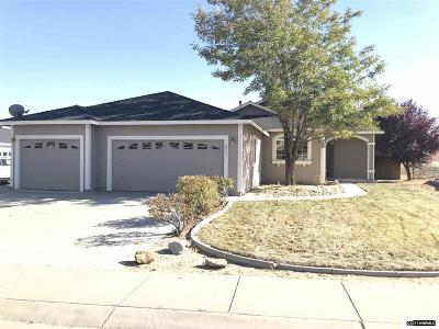 Carson City Single Family Home For Sale: 877 Valley Vista Dr