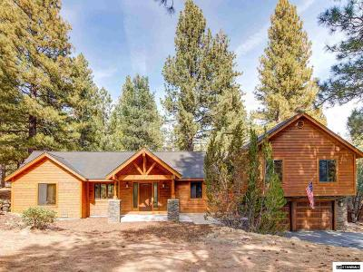 Reno Single Family Home For Sale: 17205 Big Pine Drive
