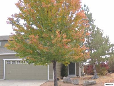 Reno Single Family Home New: 8782 Sunset Breeze Drive