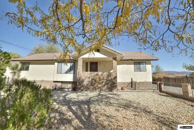 Fernley Single Family Home New: 1040 Mesa Drive