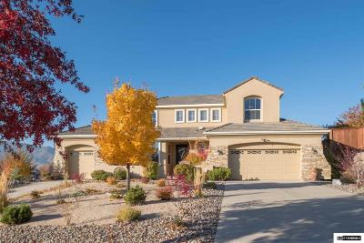 Reno, Sparks, Carson City, Gardnerville Single Family Home For Sale: 2255 Saddle Tree Trail