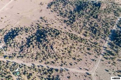 Reno Residential Lots & Land For Sale: 4160 Palisade Rd.