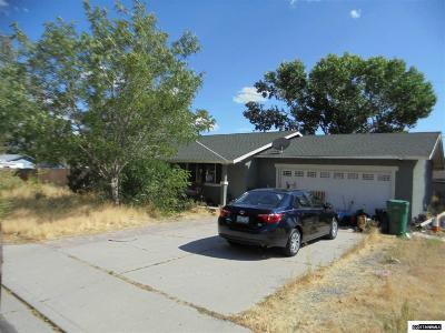 Carson City NV Single Family Home New: $215,000