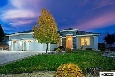 Washoe County Single Family Home For Sale: 2755 Sky Horse Trail