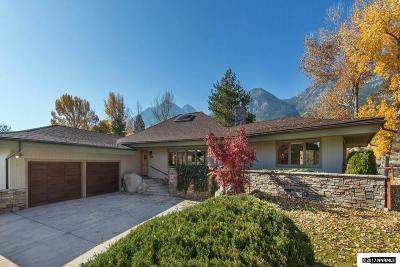 Gardnerville Single Family Home For Sale: 1049 Lakeside Dr.