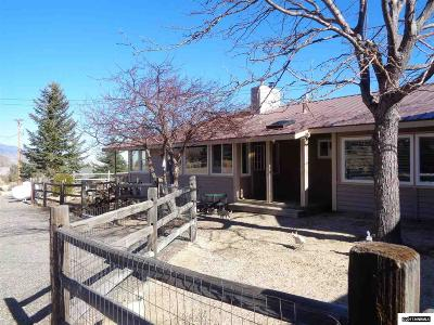 Gardnerville Single Family Home For Sale: 411 Diorite Road