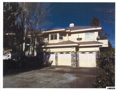 Reno Single Family Home For Sale: 450 Blue Spruce Road