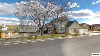 Carson City Single Family Home For Sale: 213 Pasture Drive