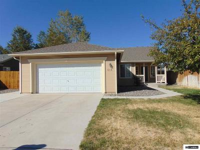 Fernley Single Family Home For Sale: 519 Summer