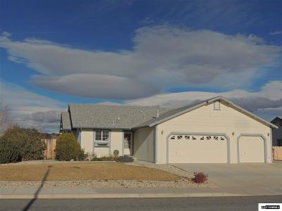 Washoe County Single Family Home For Sale: 1650 Talking Sparrow Drive