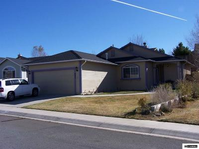Carson City Single Family Home New: 853 Valley Vista Drive