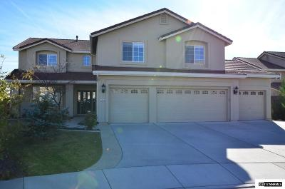 Washoe County Single Family Home For Sale: 7050 Windstar Drive