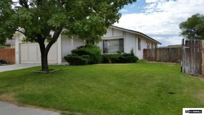 Gardnerville Single Family Home For Sale: 1316 Yellowjacket Lane