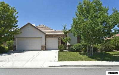 Washoe County Single Family Home For Sale: 10621 Apple Mill Dr