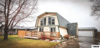 Gardnerville Single Family Home For Sale: 715 Bowles Lane