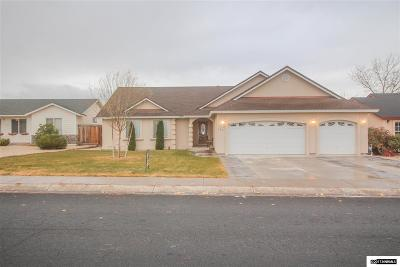 Fernley Single Family Home New: 131 Desert Lakes Drive #NV
