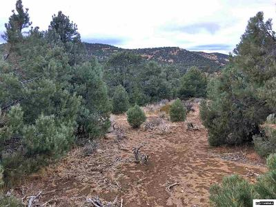 Reno Residential Lots & Land New: 2130 Conestoga