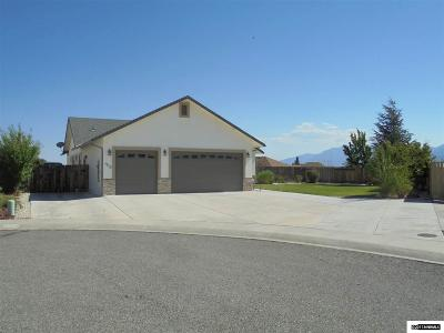 Carson City Single Family Home For Sale: 1013 Starshine Ct