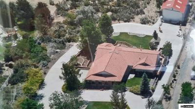 Carson City Single Family Home For Sale: 3000 Conte Drive