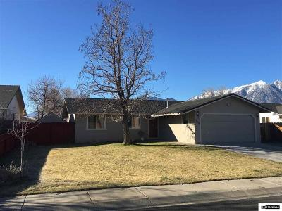 Gardnerville Single Family Home For Sale: 1359 Mary Jo Dr.