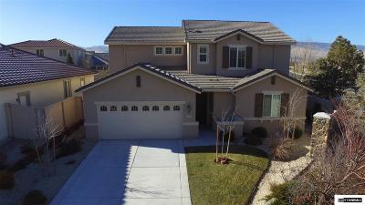 Reno Single Family Home New: 10705 Amber Falls Dr.
