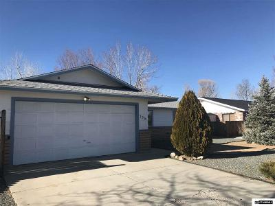 Gardnerville Single Family Home New: 736 Long Valley