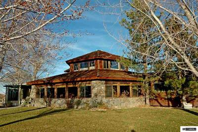 Gardnerville Single Family Home For Sale: 659 Stones Throw