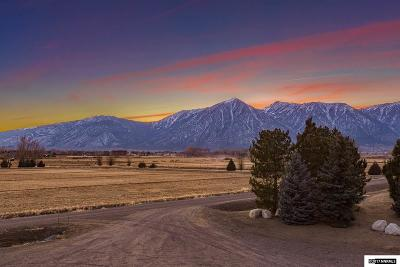 Gardnerville NV Residential Lots & Land New: $3,100,000