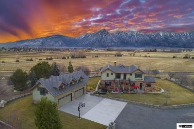Gardnerville NV Single Family Home New: $3,500,000
