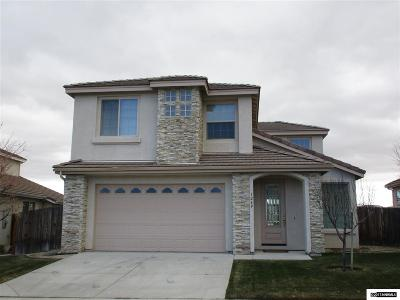 Carson City County Single Family Home For Sale: 1269 Flintwood Drive