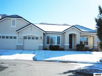 Reno, Sparks, Carson City, Gardnerville Single Family Home For Sale: 5864 Lone Horse Ct