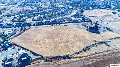 Gardnerville Residential Lots & Land For Sale: 1280 Dresslerville