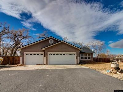 Fernley Single Family Home For Sale: 1000 Red Rock Rd