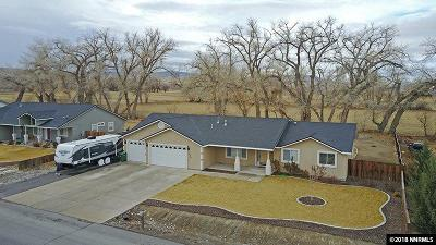 Fernley Single Family Home For Sale: 1020 Red Rock Rd.