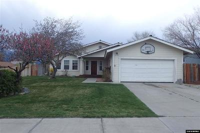 Gardnerville Single Family Home For Sale: 648 Long Valley Rd