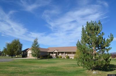 Gardnerville Single Family Home For Sale: 1007 Irma Lane