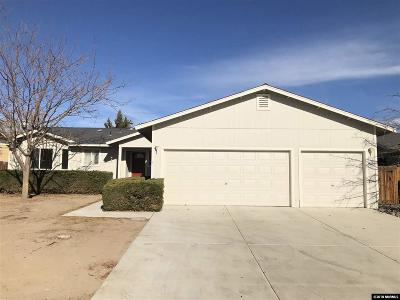 Fernley Single Family Home For Sale: 480 Shadow Lane