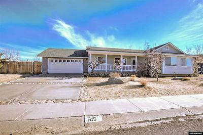 Gardnerville Single Family Home Active/Pending-Loan: 615 Jill Drive