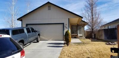 Carson City Single Family Home For Sale: 1001 Hillside Drive