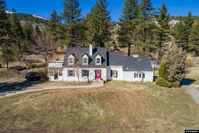 Washoe County Single Family Home For Sale: 101 Winters Creek Lane