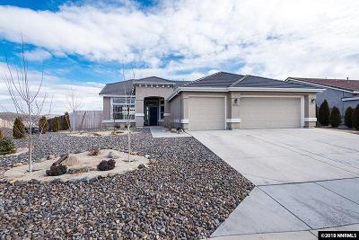 Reno Single Family Home For Sale: 17890 Cedar Mountain