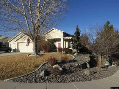 Washoe County Single Family Home New: 7355 Coyote Springs Ct