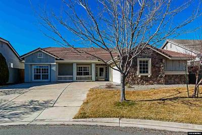 Reno Single Family Home New: 10473 Copper Wood Ct